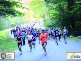 PHOTOS: Clarence DeMar Marathon & Half Marathon – 2019