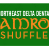 RESULTS: Northeast Delta Dental Shamrock Shuffle – 2017